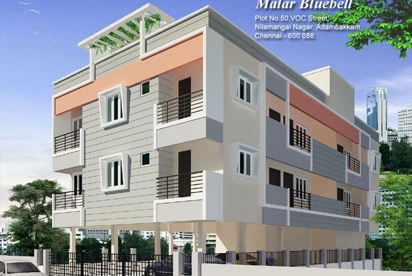 Malar-Bluebell